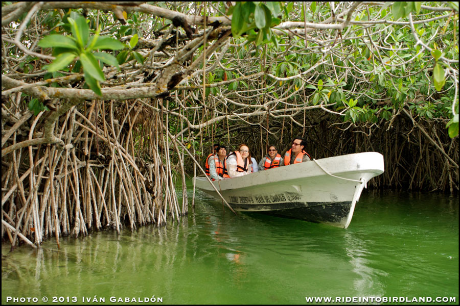 Part of our group exploring the waters and mangroves of the Sian Ka'An Reserve. (Photo © Ivan Gabaldon).