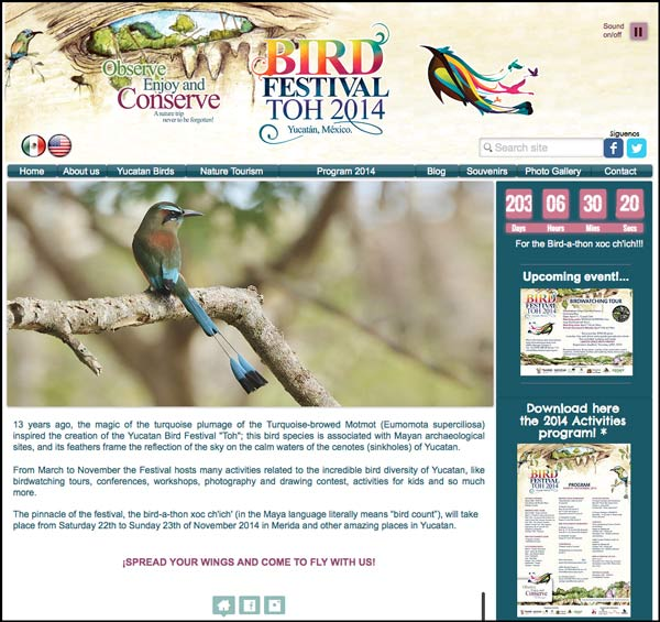Click on this image to visit the website of the Bird Festival Toh 2014. (© Pronatura Peninsula de Yucatan).