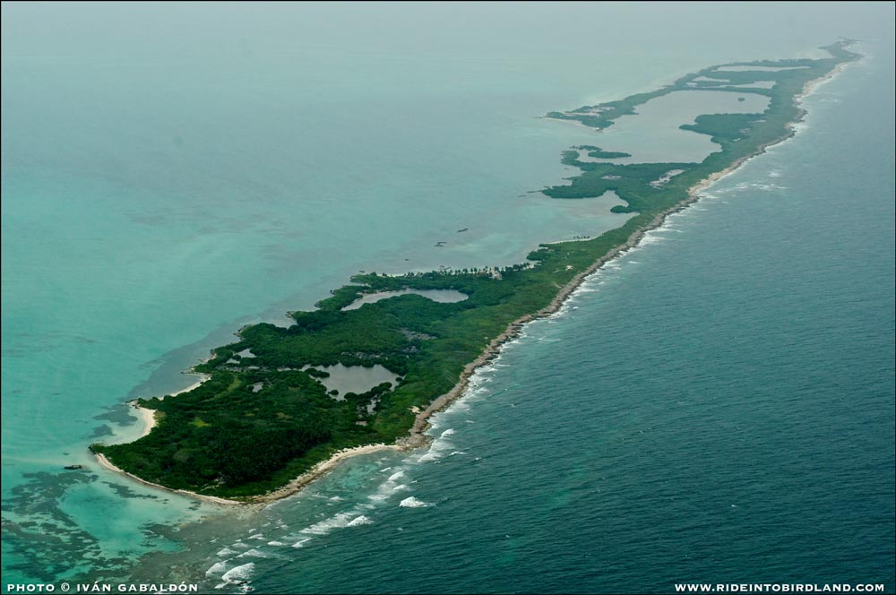 A head-to-toe view of Isla Contoy. (Photo © Ivan Gabaldon - Aerial support provided by Lighthawk to Pronatura Peninsula de Yucatan).