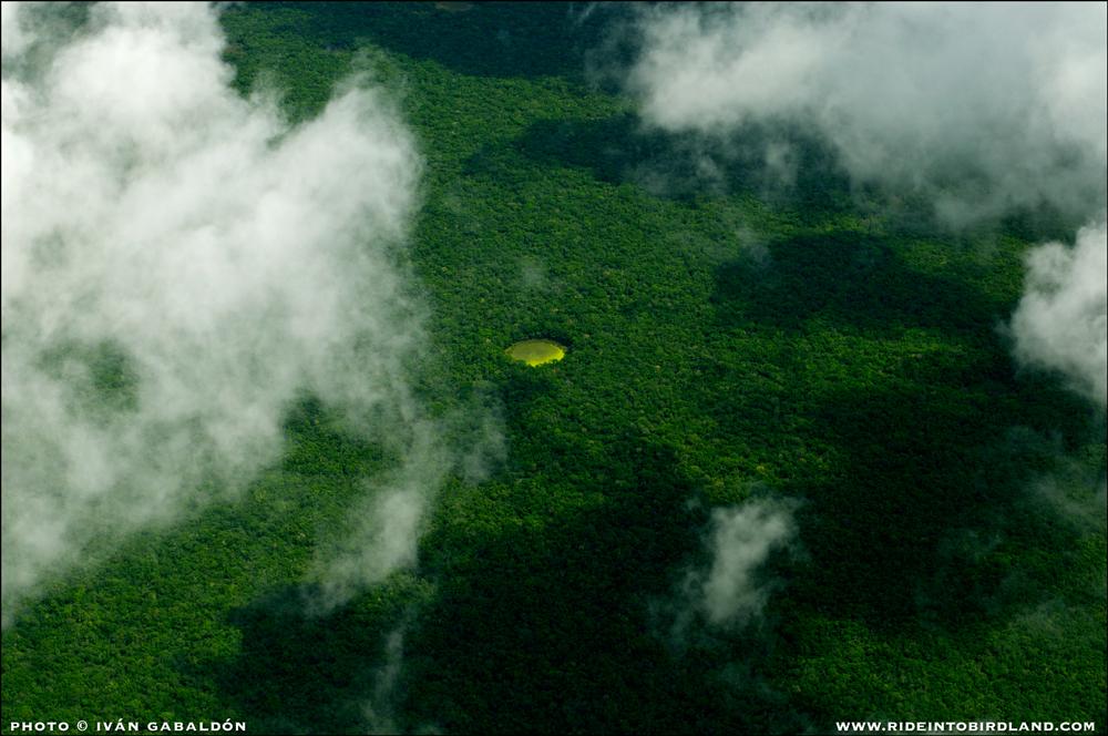 Miles de cenotes abiertos como éste puntean la geografía de la Península de Yucatán, proveyendo agua que es valiosa por igual para el ecosistema y los seres humanos. (Foto © Iván Gabaldón - Soporte aéreo provisto por Lighthawk para Pronatura Península de Yucatán).