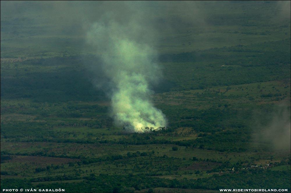 Pudimos documentar la presencia de este incendio, aunque no pudimos determinar su causa. (Foto © Iván Gabaldón - Soporte aéreo provisto por Lighthawk para Pronatura Península de Yucatán).