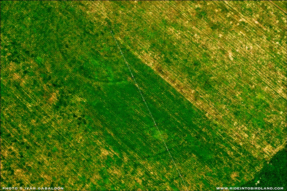 A mechanized irrigation system draws a distinct pattern that can only be man made. (Photo © Ivan Gabaldon - Aerial support provided by Lighthawk to Pronatura Peninsula de Yiucatan).