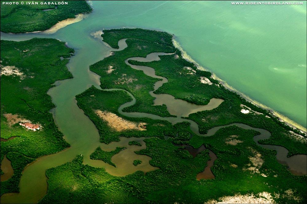 A medida que volamos a lo largo de la costa el paisaje no deja de sorprendernos con sus constantes cambios. (Foto © Iván Gabaldón - Soporte aéreo provisto por Lighthawk para Pronatura Península de Yucatán).