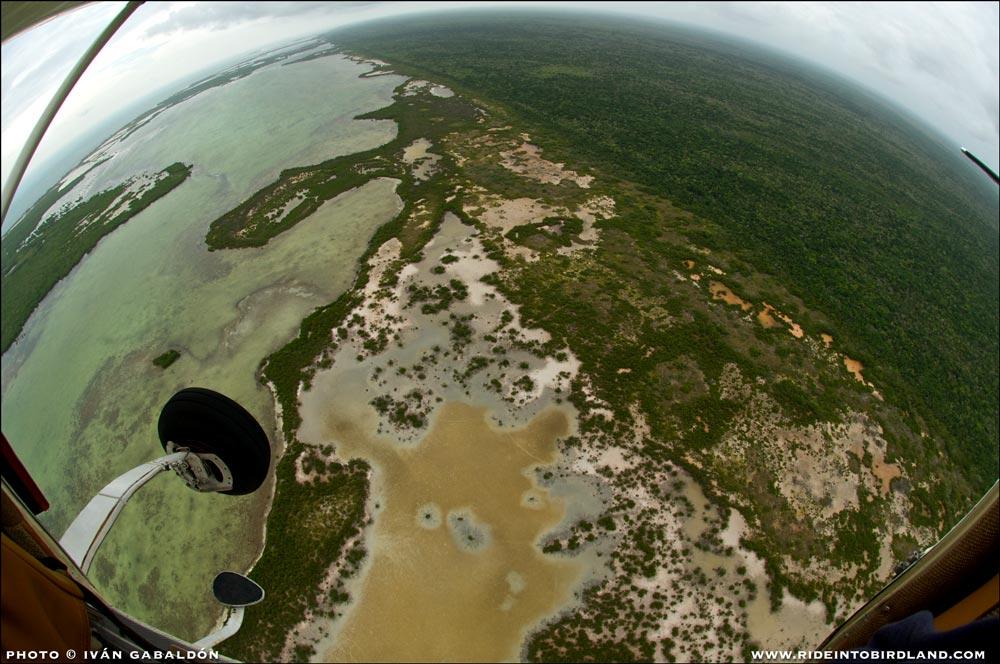El paisaje cambia drásticamente al acercarnos a la costa. (Foto © Iván Gabaldón - Soporte aéreo provisto por Lighthawk para Pronatura Península de Yucatán).