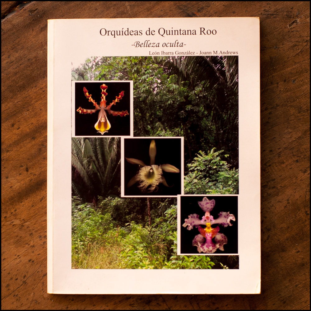 """Orquideas de Quintana Roo"", by León Ibarra González and Joann M. Andrews. (Photo © Iván Gabaldón)."