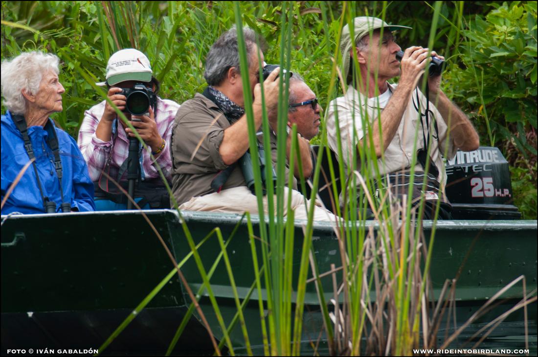 Observando aves desde los botes, de izq. A der.: Joann Andrews, María Andrade, Francisco Hernández, Ramón Sanz, Paul Wood. (Foto © Iván Gabaldón).