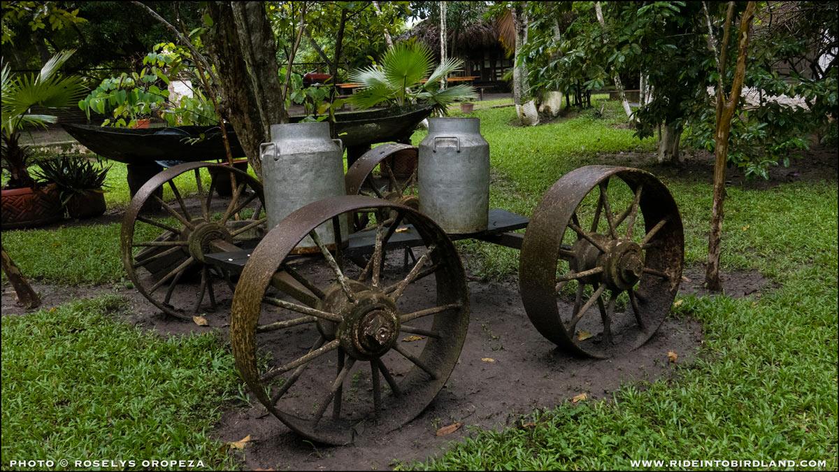 Implementos como éstos, que ahora tiene un rol decorativo, dan fe de la actividad lechera a la que se dedicaba originalmente el rancho San Román. (Foto © Roselys Oropeza).