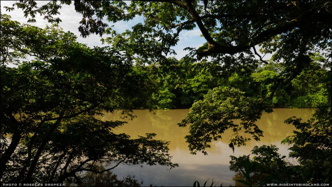 Río Palizada. Vista desde la veranda del Rancho San Román. (Foto © Roselys Oropeza).